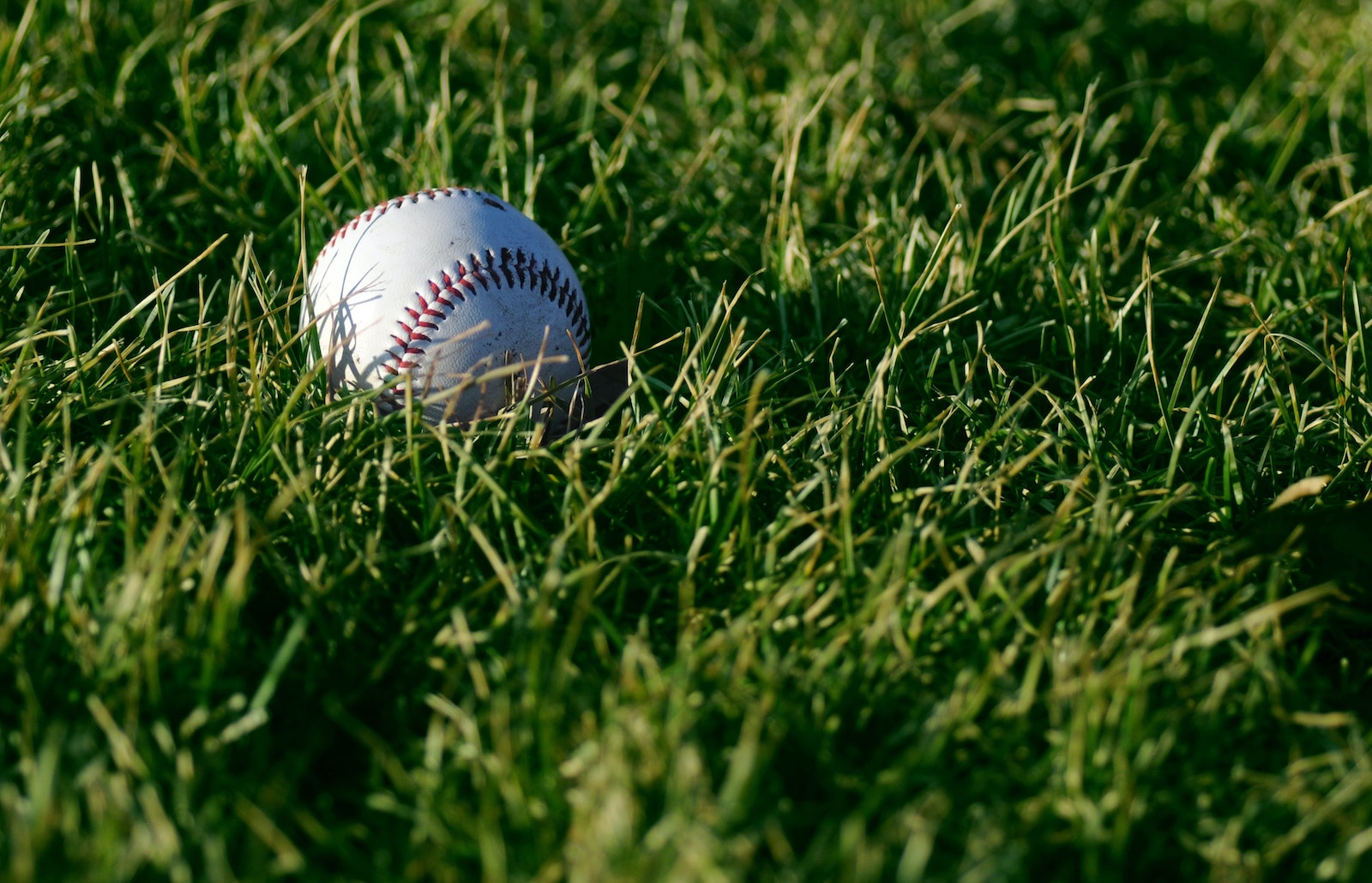 The Field of Dreams Fallacy