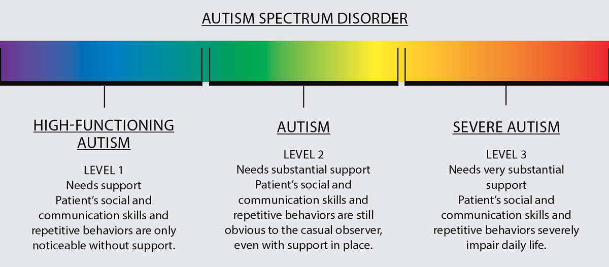an image representing the 'autism spectrum', ranging from 'high-functioning' to 'severe' with a brief description of the purported differences