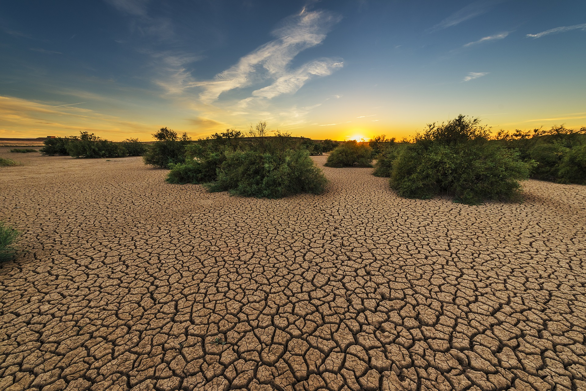 Drought – Psalm 126